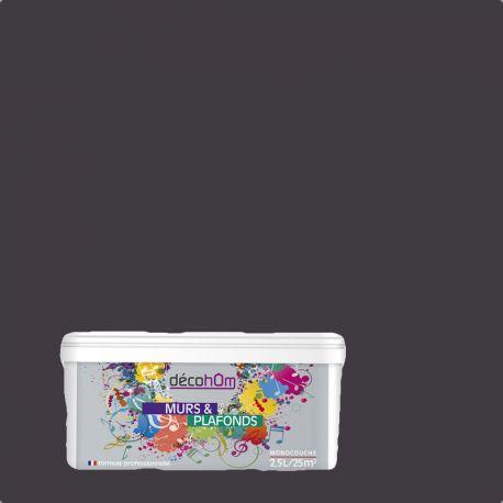 Peinture murale Jazz Gris anthracite DECOHOM S 7005-R50B