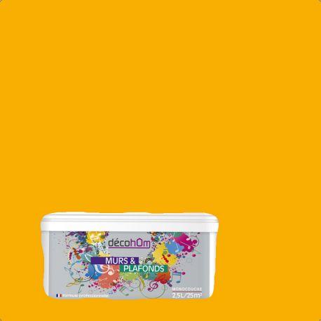 Peinture murale Citrouille DECOHOM S 0580-Y10R