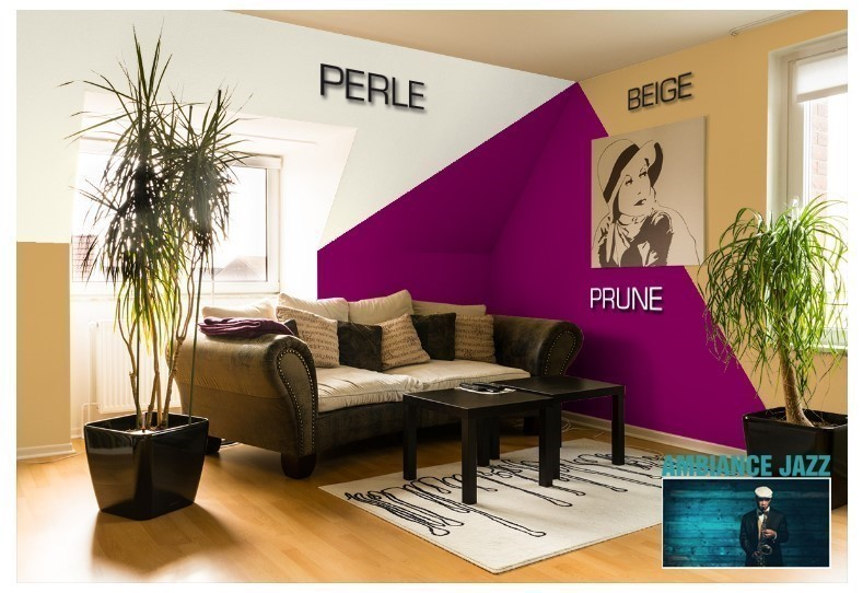 Exemple salon couleur Prune