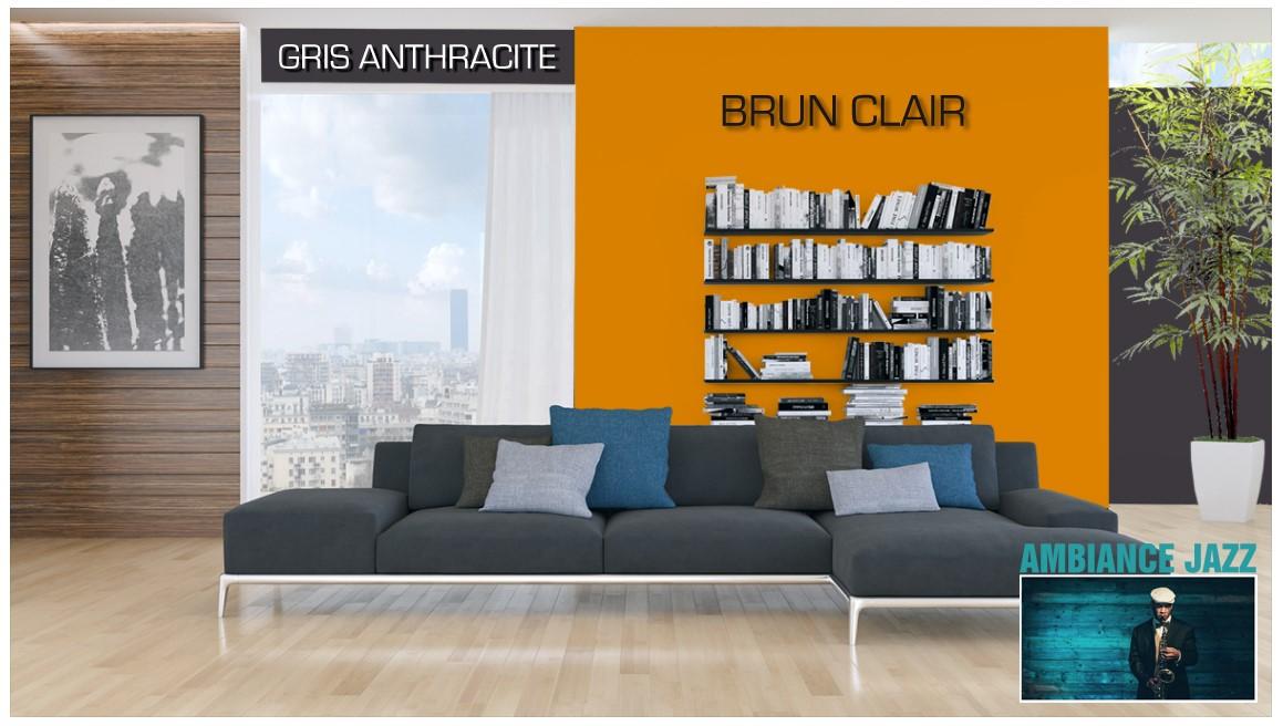Exemple salon couleur  Gris anthracite