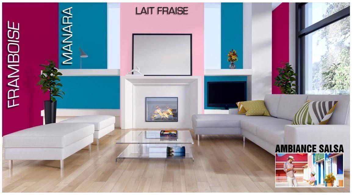 Exemple salon couleur Framboise