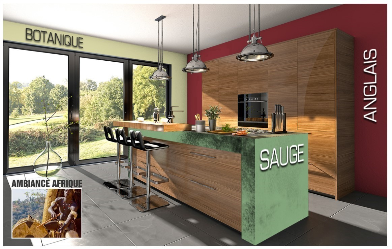 Exemple cuisine couleur Sauge