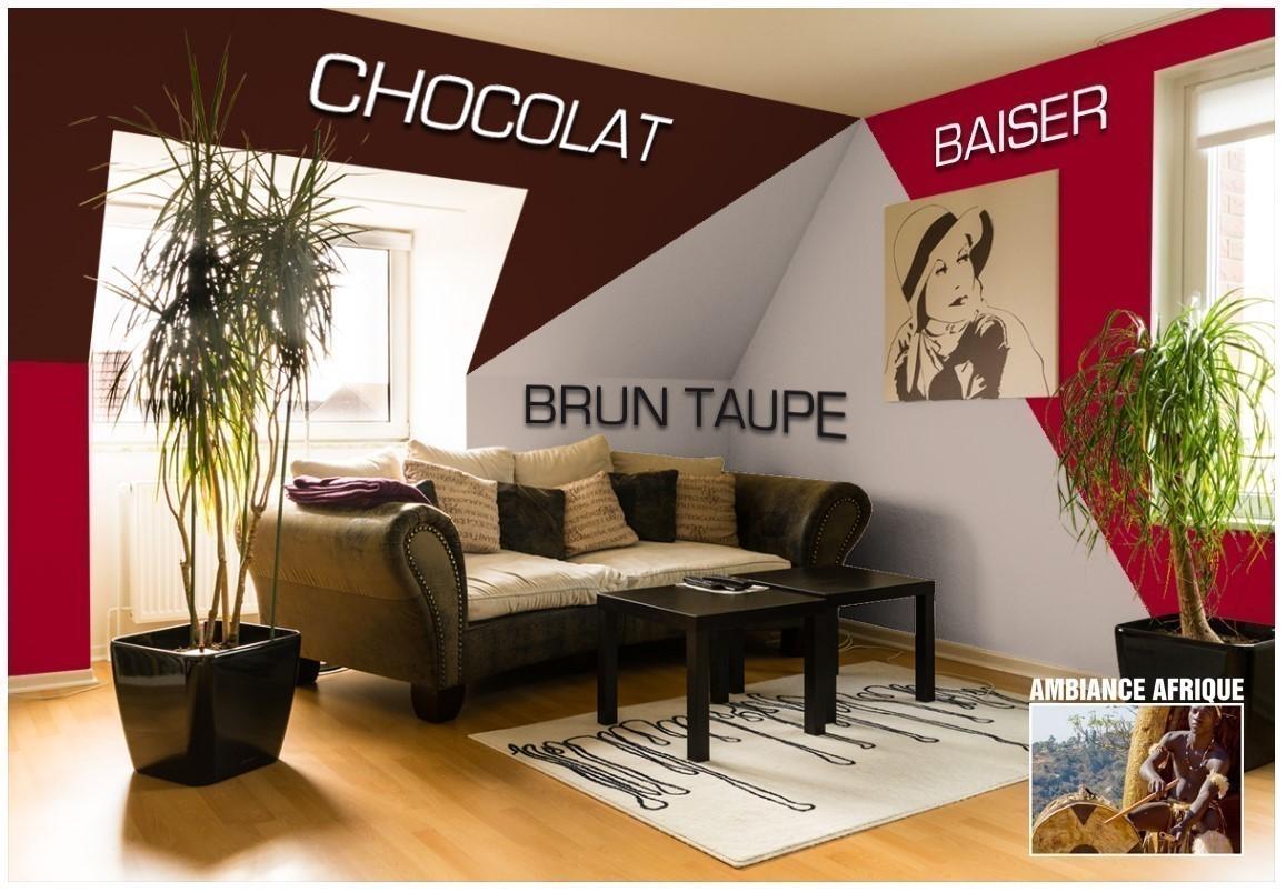 Exemple salon couleur Rouge Baiser
